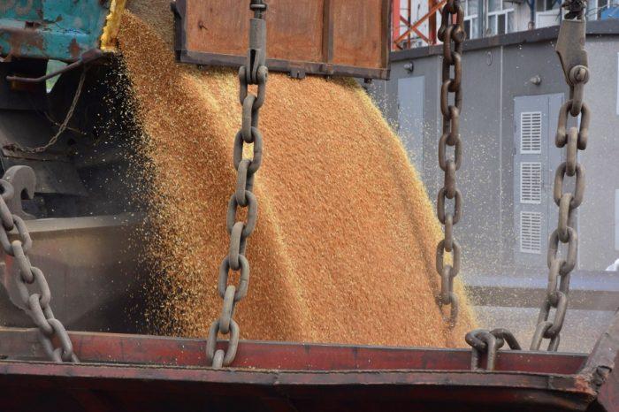 2020: надежды и реалии зернового рынка