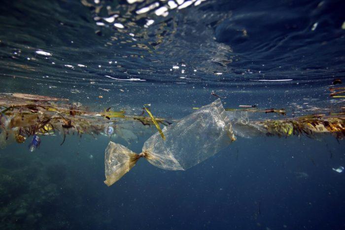 Роботы SeaClear уберут мусор с океанического дна
