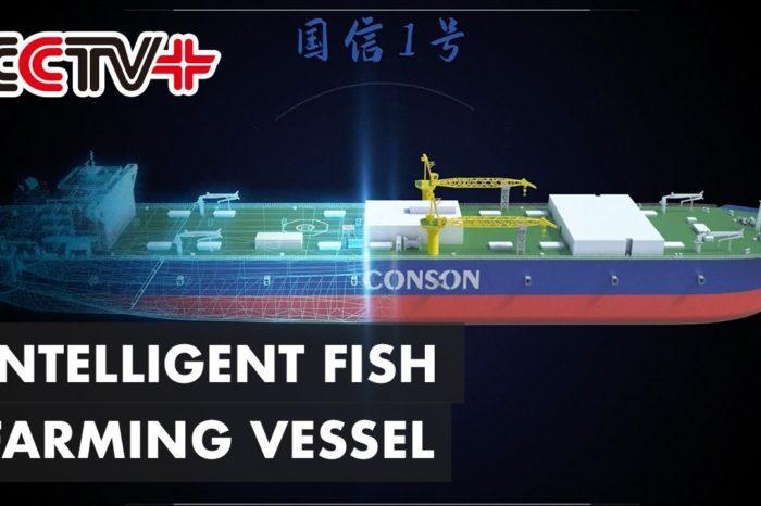 В Китае построят плавучую рыбоводческую ферму дедвейтом 100 тыс. тонн (ВИДЕО)