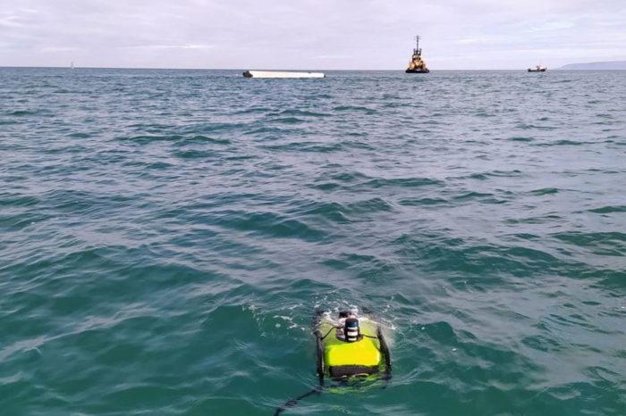 Проект WESE осуществляет мониторинг WaveRoller за пределами Португалии