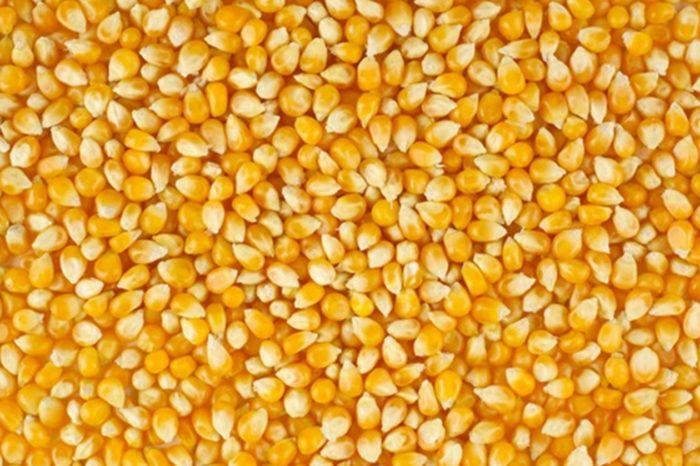 Минэкономики и участники зернового рынка согласовали лимит экспорта кукурузы на 2020/2021 МГ