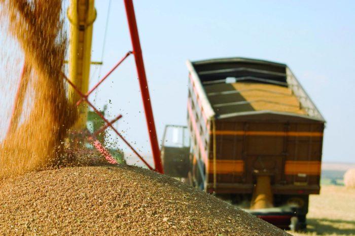 Украина увеличила импорт агропродукции на 13%
