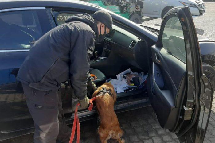 В порту Одессы пограничники обнаружили в автомобилях более 300 боеприпасов