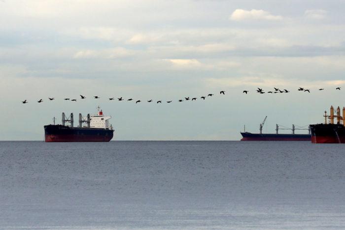 Мировой торговый флот составляет более 100 тысяч торговых судов