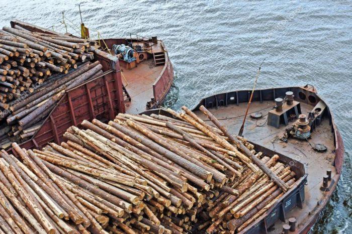 Россия вводит запрет на экспорт необработанной древесины