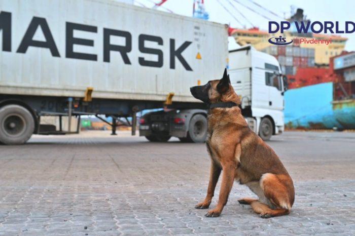 На ТИСе показали, кто проверяет контейнеры из Латинской Америки
