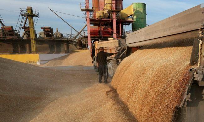 Россия повысила пошлину на вывоз пшеницы