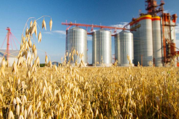 Тарифы на экспорт агропродукции в ЕС могут вырасти на 3%