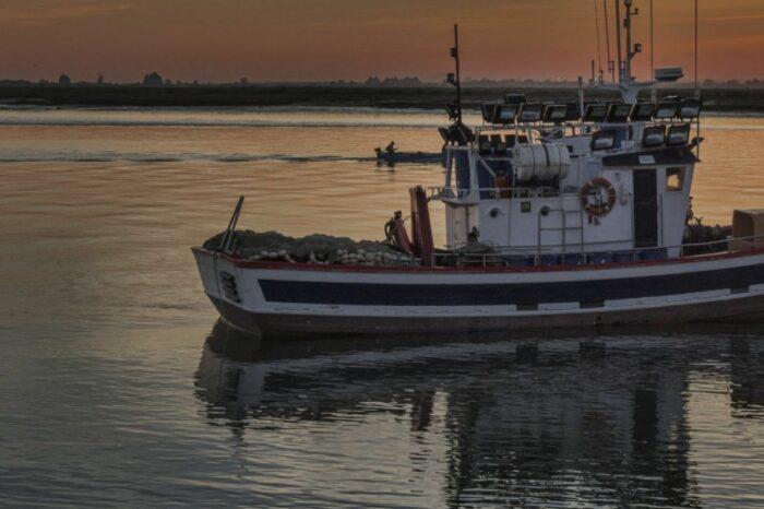 У берегов Японии рыболовецкое судно столкнулось с российским: есть погибшие