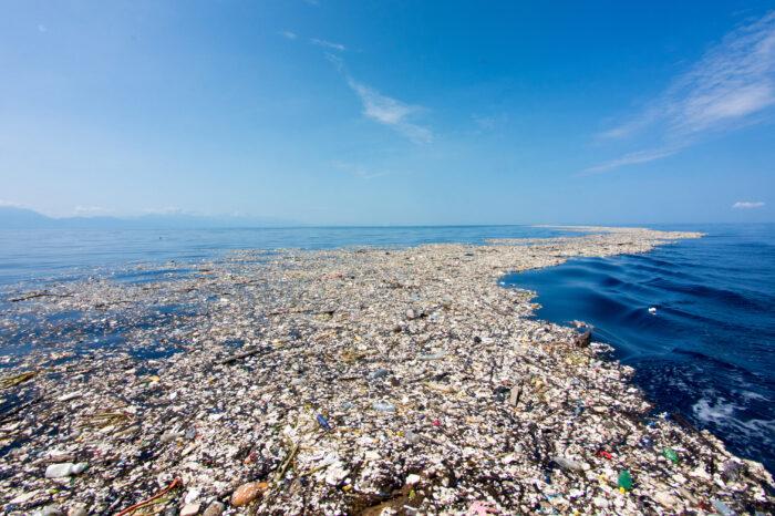 Всемирный день океанов ООН: как судоходство спасает экологию