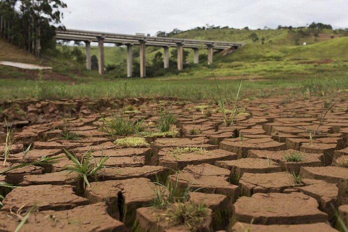 В Бразилии сильнейшая засуха: как это повлияет на украинский экспорт?