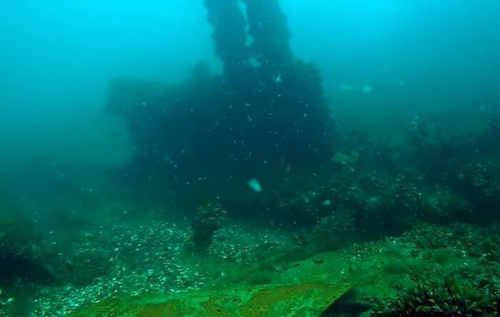 В Черном море обследуют затонувшее судно времен Второй мировой войны