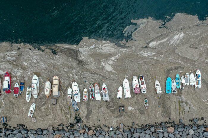 Мраморное море у берегов Турции покрылось слоем слизи
