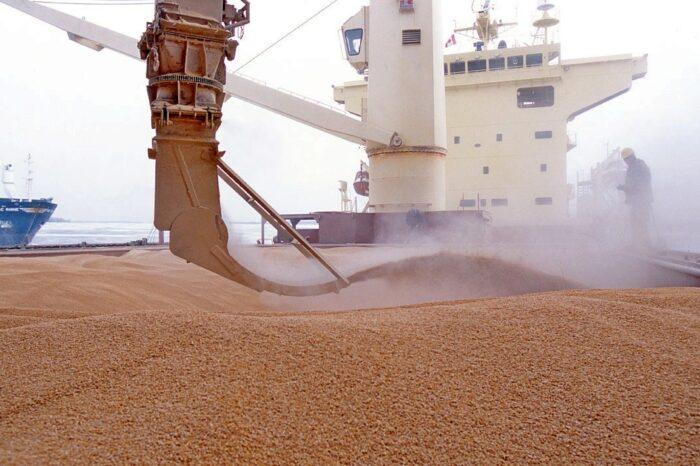 Перевалка зерновых в портах: Николаев остаётся самым загруженным в новом сезоне