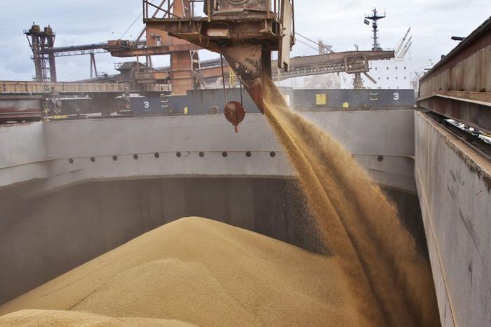 В Украине выросли экспортные цены на пшеницу