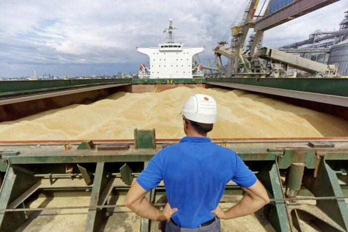 Устойчивый спрос, ливни и Египет: как Украина открыла новый сезон экспорта пшеницы