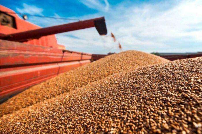 Украина экспортировала первый миллион тонн зерна нового урожая
