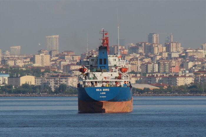 Сухогруз с украинским зерном затонул в водах Греции