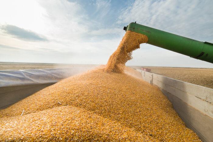 Экспорт агропродукции из Украины подорожал