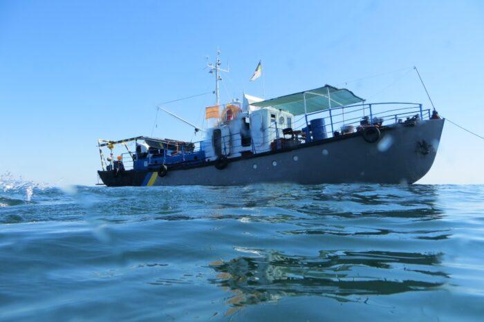 Миноносец «Фрунзе» на дне Черного моря снова привлек внимание водолазов