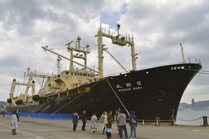 В Японии строят новое китобойное судно: активисты против
