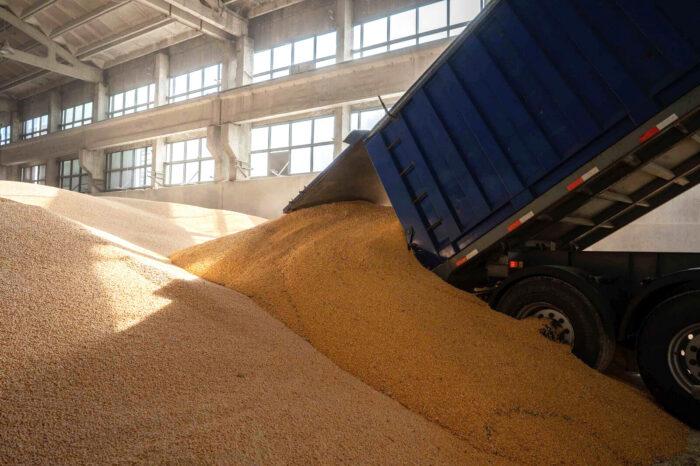Более 6 млн тонн украинского зерна уже ушло на экспорт
