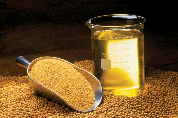 Мировой рынок масла: чего ждать Украине?